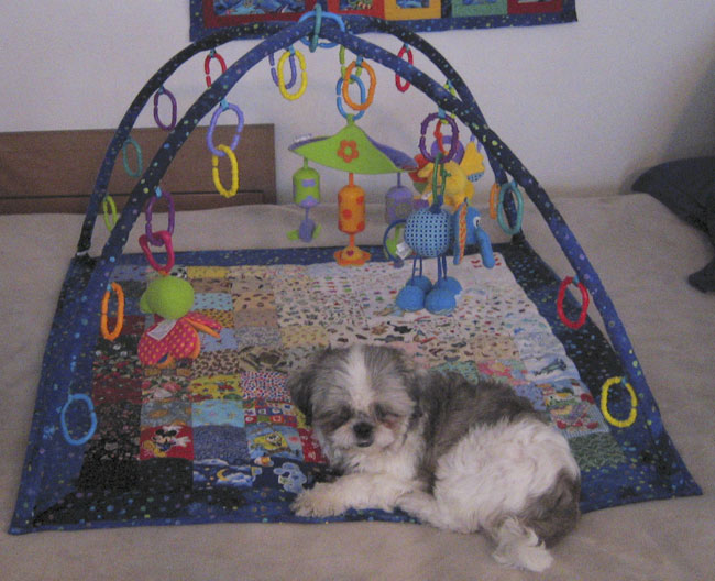 Hand-sewn baby play mat with arches and everything
